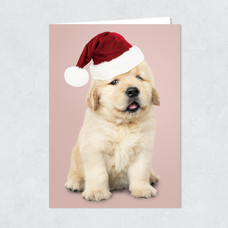 Santa Golden Retriever Puppy Christmas Card PBHAL023